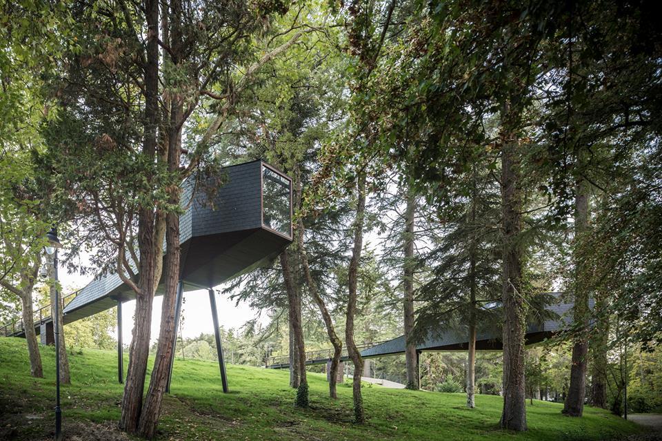 Tree Snake House - Pedra Salgadas (3)