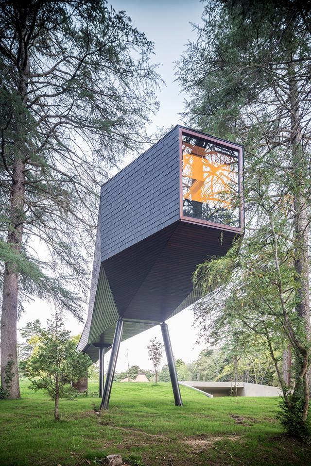Tree Snake House - Pedra Salgadas (4)